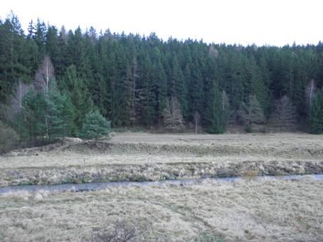Bočníhráz rybníka nad prostředním hamrem